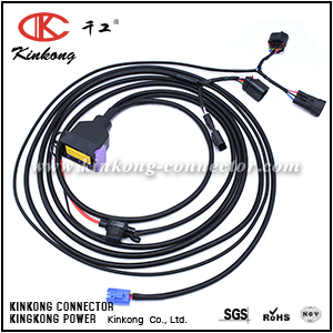 OEM automotive wire harness 2