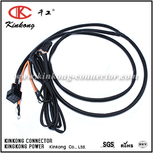 Wire harness cable assembly custom WD039